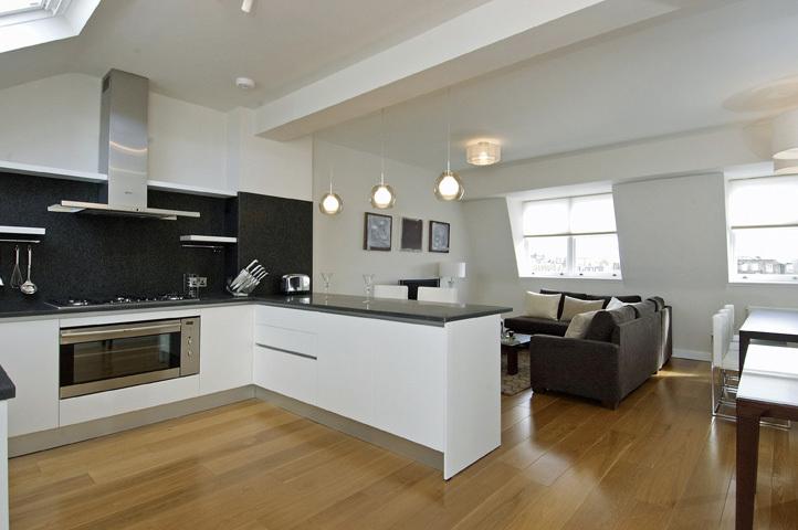 A 2-bed apartment in Bayswater  Kitchen area  Anna Hansson Design Ltd