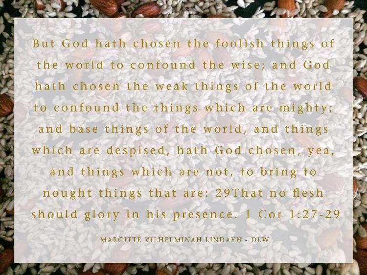 1 Cor 1-27-29 gold - DLW
